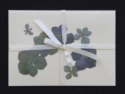 Flower cards with dried hydrangea flowers by nora -  light ribbon